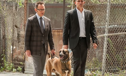 Person of Interest Season 4 Report Card: Grade It!