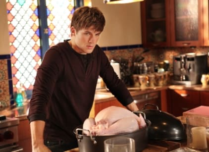 Watch 90210 Season 4 Episode 10 Online