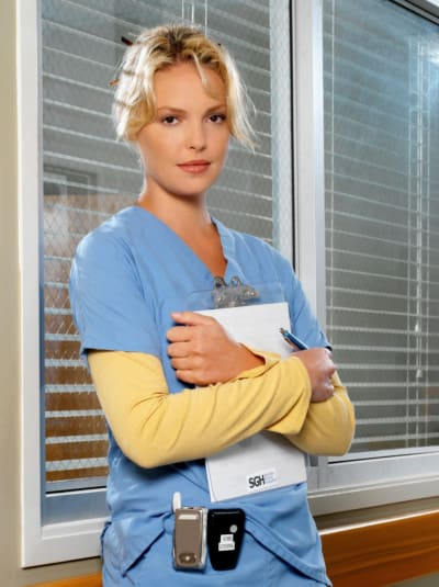 heigl greys pic 4