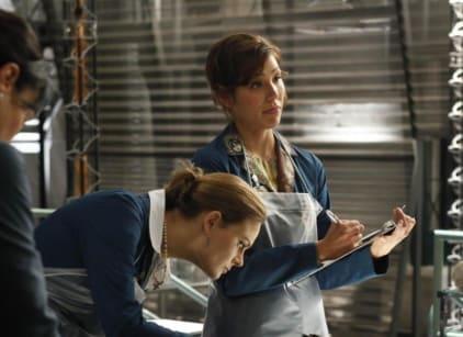 Watch Bones Season 5 Episode 2 Online