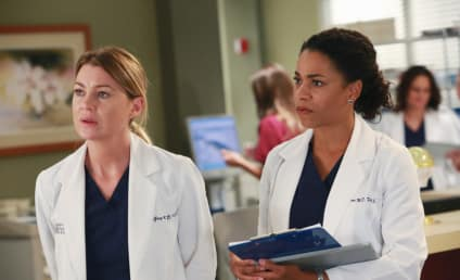 9 Wishes for Grey's Anatomy Season 13