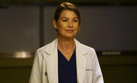 ABC Season Finale Spoilers: How Will Grey's Anatomy, Scandal & Modern Family Conclude?