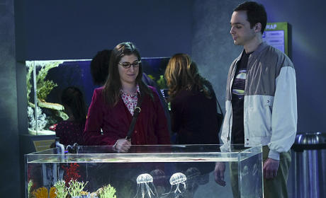 The Aquarium Thanksgiving - The Big Bang Theory