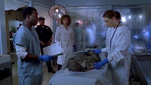 Temperance Brennan (Bones)