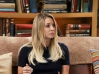 The Big Bang Theory Season 10 Episode 14