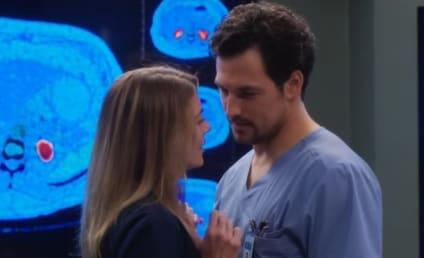 Grey's Anatomy Renewed for Two Seasons at ABC!