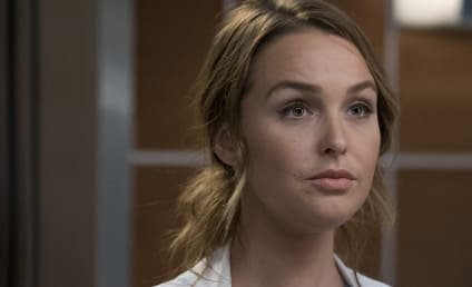 Grey's Anatomy Season 14 Episode 9 Review: 1-800-799-7233