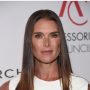 Law & Order: SVU: Brooke Shields Joins Cast