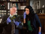 A Severed Foot - Rizzoli & Isles