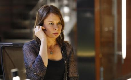 Mary Lynn Rajskub as Chloe