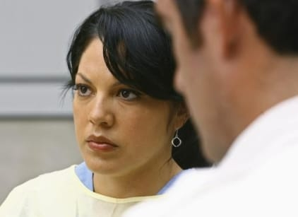 Watch Grey's Anatomy Season 5 Episode 23 Online
