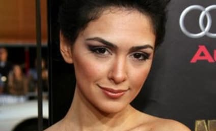 Nazanin Boniadi to Romance Barney on How I Met Your Mother