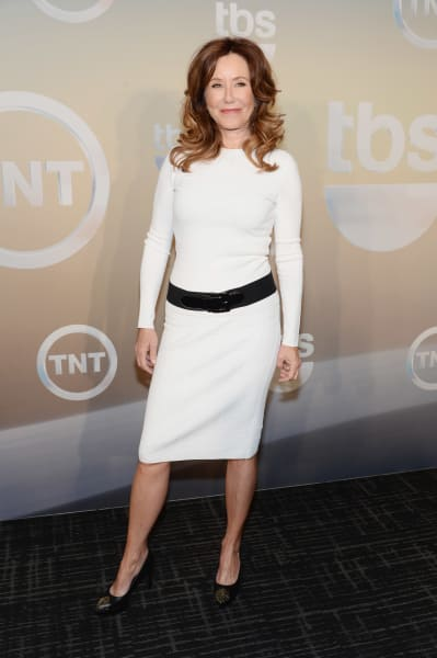 Mary McDonnell Attends TNT Upfronts