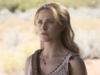 Always Remembered - Westworld