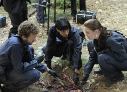 Watch Bones Season 8 Episode 13 Online