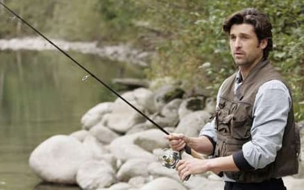 McDreamy Fishes