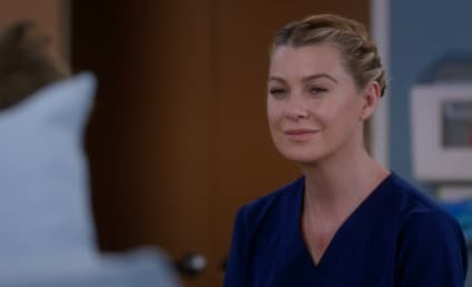 Watch Grey's Anatomy Online: Season 14 Episode 17