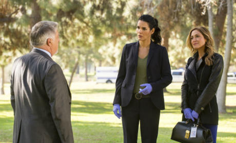 Rizzoli and Isles on the case
