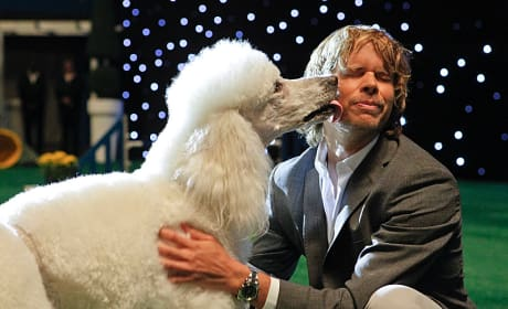 Deeks at the Dog Show