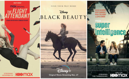 What to Watch: The Flight Attendant, Superintelligence & Black Beauty