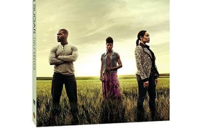 Queen Sugar: All About the Complete First Season on DVD
