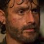 Rick - The Walking Dead Season 8 Episode 2