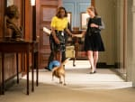 Taking Care of the Dog - Madam Secretary