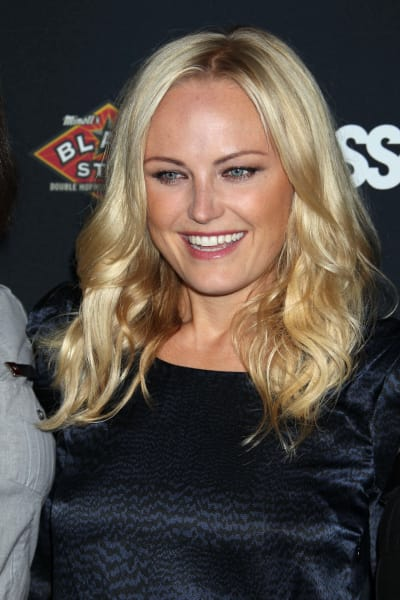 Malin Akerman Pic