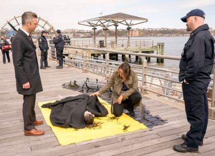 Watch Law & Order: SVU Season 20 Episode 24 Online