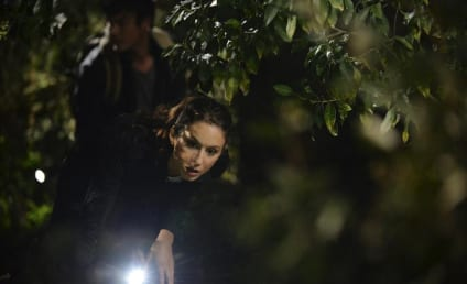 Pretty Little Liars Season 5 Episode 15 Review: Fresh Meat