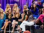 Feuds Are Revived - The Bachelor