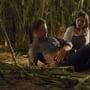 Pain for Alaric - The Vampire Diaries Season 6 Episode 5