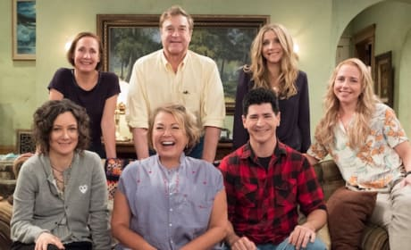 Roseanne: Canceled by ABC! Stars, Celebrities React!