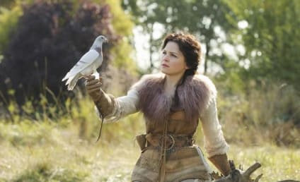 Once Upon a Time, Others: Renewed by ABC!