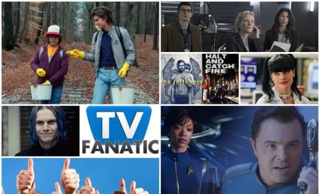 TV Fanatics Share their Appreciation of the Small Screen
