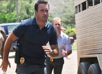 Watch Hawaii Five-0 Season 3 Episode 4 Online