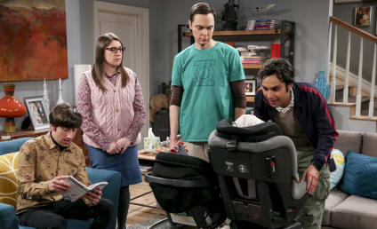 Watch The Big Bang Theory Online: Season 12 Episode 17