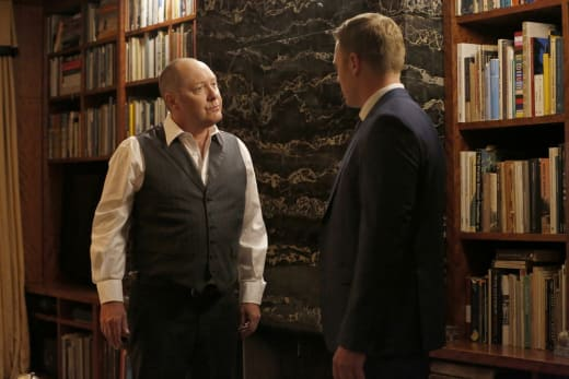 Directing the Task Force - The Blacklist