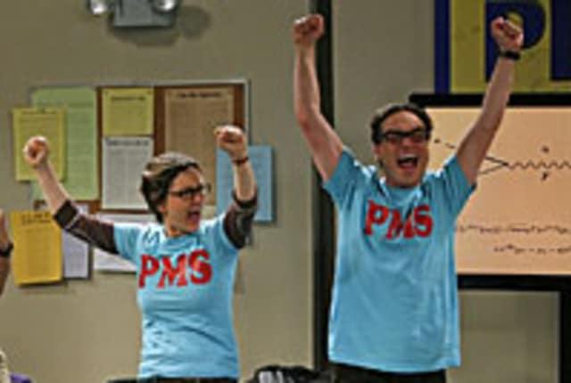 Watch The Big Bang Theory Season 1 Episode 13 Online Tv Fanatic