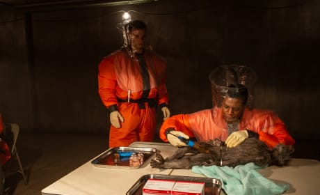 Dissecting a Contaminated Monkey - The Hot Zone