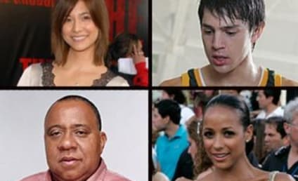 Meet New Heroes: Nick D'Agosto, Dania Ramirez, Others