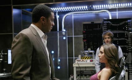 """Dollhouse Photos from """"The Target"""""""