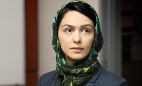 Nazanin Boniadi on Homeland