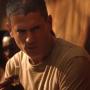 Fox Unveils Spring Premiere Dates: When Does Prison Break Premiere?