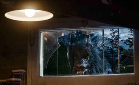 Big Bad Hybrid - Zoo Season 3 Episode 1