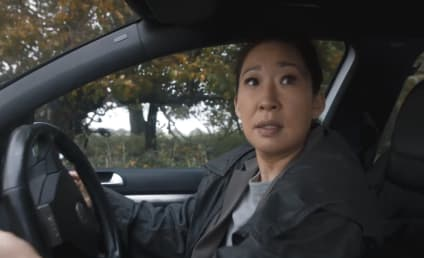Killing Eve Season 1 Episode 5 Review: I Have a Thing About Bathrooms