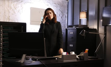 Watch The Blacklist Online: Season 4 Episode 13