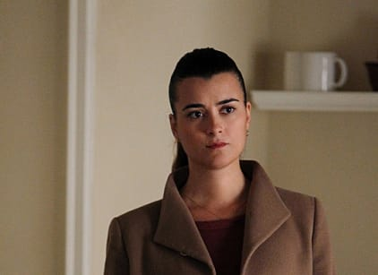 Watch NCIS Season 10 Episode 12 Online