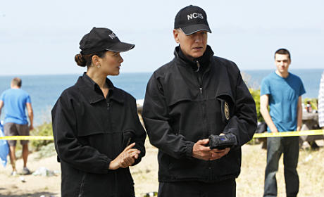 Ziva and Gibbs Picture