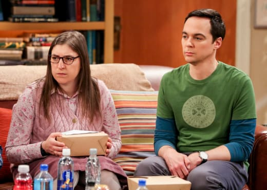 Turning Him In - The Big Bang Theory